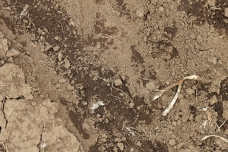 Soil on the farm